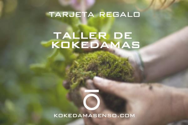 ¡¡¡Tarjeta Regalo Taller de Kokedamas!!!